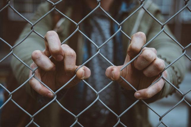 Živi zid traži strože kazne za pedofile i javni registar poput onog u SAD-u
